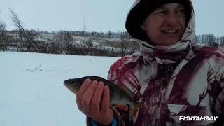 Правила рыбной ловли в тамбове
