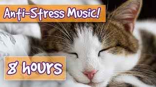 Songs for Nervous Cats! Soothing Music to Calm Your Hyperactive, Anxious Cat and Help with Sleep! 🐈