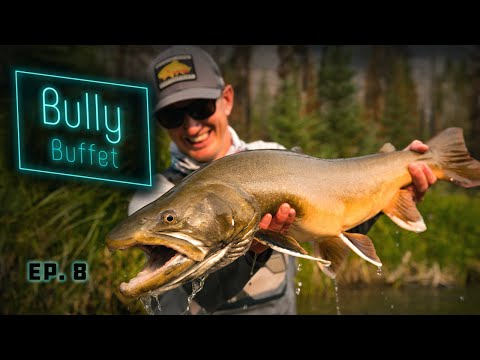 Bully Buffet - GIANT Bull Trout Fly Fishing!