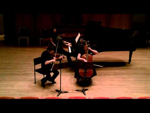 Brahms Piano Trio Op. 87, 1st mvt.