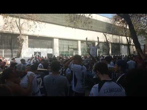 """La Peste Blanca - Despacito / Previa Vs.Chicago 2017"" Barra: La Peste Blanca • Club: All Boys"