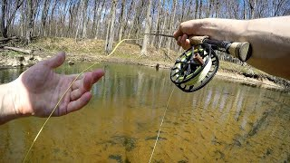 Pike on the Fly - Fishing CLEAR Shallow rivers