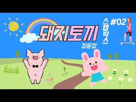 [중구체육회x운동]장윤정-돼지토끼 스텝박스2
