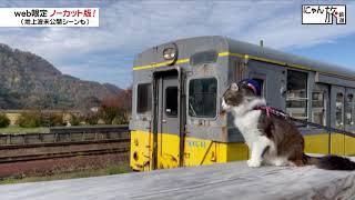 Vol.90「にゃん旅鉄道」自然でリフレッシュにゃ~