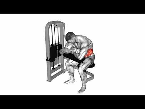 Karın/Mide Egzersizleri - Lever Seated Crunch