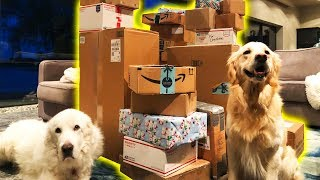 THE BIGGEST FAN MAIL PACKAGE EVER - Super Cooper Sunday #189
