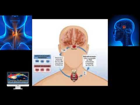 Tratamento da hipertensão em tireotoxicose
