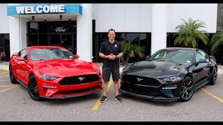 Which 2019 Ford Mustang GT Performance Pack should you BUY?