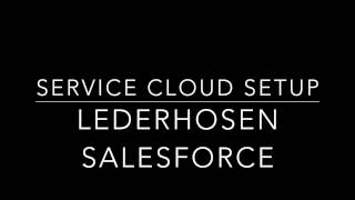 Service Cloud Setup Guide for a 300+ Employee Department like 311 IT Service Center