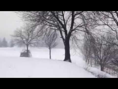Nevicata del 15 febbraio nel Varesotto