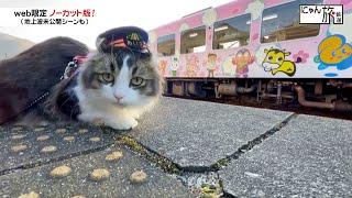 Vol.94「にゃん旅鉄道」仕事終わりの楽しみにゃ