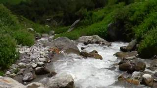 Pushpavathi River, Valley of Flowers, Uttarakhand