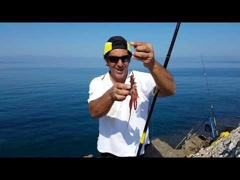Comprare la serie per pescare in battute di entrata
