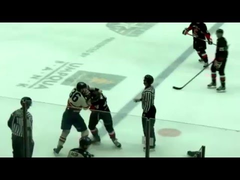 Brandon Carlo vs. Kody McDonald
