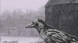 Winter ... Song: the innocence mission - See Amid The Winter's Snow (2011)