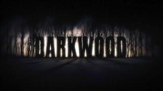 Darkwood жуткое дело