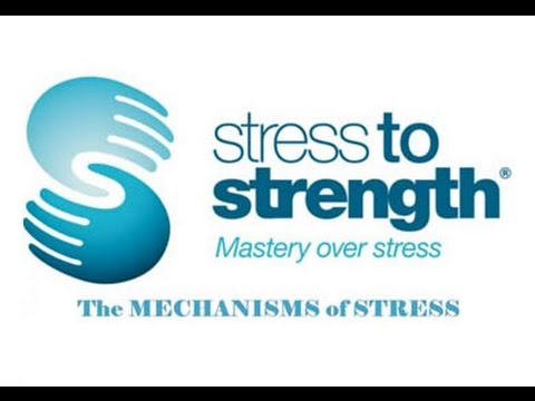 Stress Management in the Workplace - Stress Reduction Training