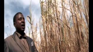 Mhlekazi-Uthandiwe