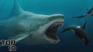 Top 10 Scary Prehistoric Monsters