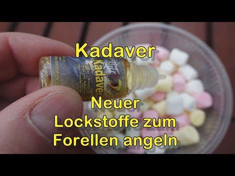 Kadaver - Neuer Lockstoff zum Forellen angeln