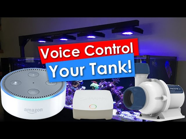 Voice controlled Reef Tank using Amazon Alexa Echo Dot, Ecotech Reeflink and a Vectra M1
