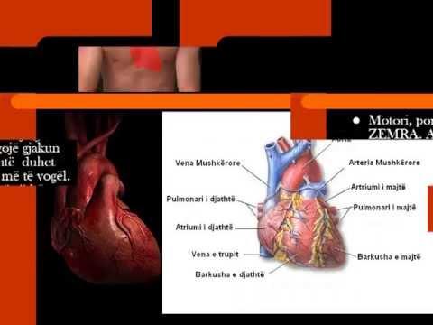 Hipertension dhe LVH