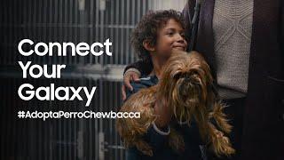 Samsung Connect Your Galaxy | La unión hace la fuerza #AdoptaPerroChewbacca anuncio