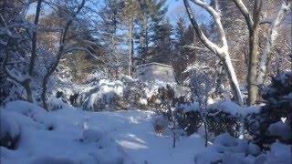 Winter Storm Jonas in Providence, Rhode Island - January 23, 2016