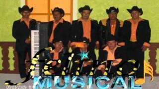 Felino Musical