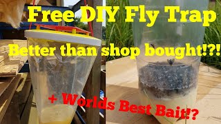 Making the best DIY fly trap, with the ultimate fly bait