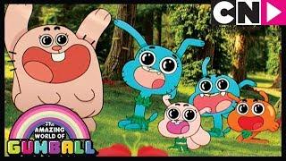 Gumball | Anais' Paradise | The Check | Cartoon Network