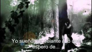 Let Me Go - 3 Doors Down subtitulada