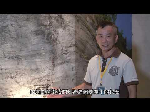 【遨遊南博竹蜻蜓】臺南左鎮化石園區-自然史教育館篇