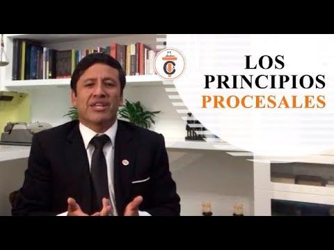 LOS PRINCIPIOS PROCESALES -  Tribuna Constitucional 126 -  Guido Aguila Grados