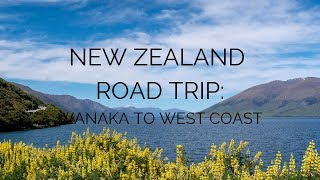 New Zealand Road Trip: Wanaka, Haast Pass, & West Coast of the South Island