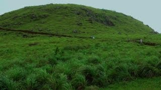 Ponmudi  - a green land