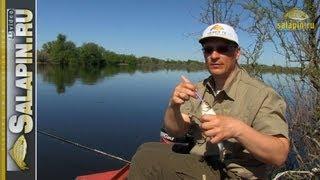 Хитрости рыбалки с берега на нижней волге в мае