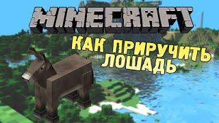 Как поменять ник в Minecraft, в Майнкрафте | Всё об игре ...