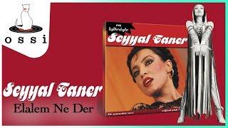 Seyyal Taner / Elalem Ne Der