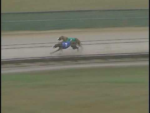 Race 22