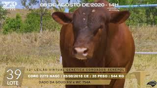 Coro 2279 b4 fiv