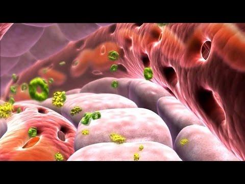 Инструкция по применению инсулина новомикс
