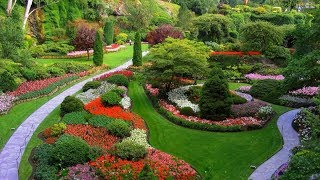 WOW! Ideas For Garden And Landscape Design Beautiful