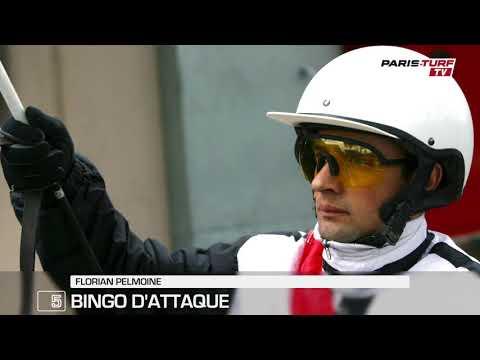 """Quinté mercredi 22/08 : """"Je n'ai pas d'autre engagement pour Bingo d'Attaque (5)"""""""