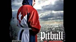 Danny Fernandes feat Pitbull  Private Dancer