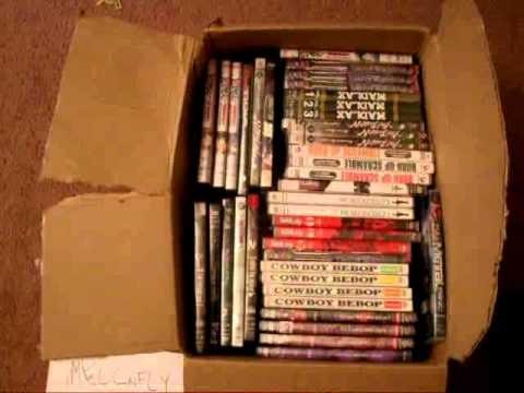 ºº Free Streaming Ninja Vixens: Complete Box Set