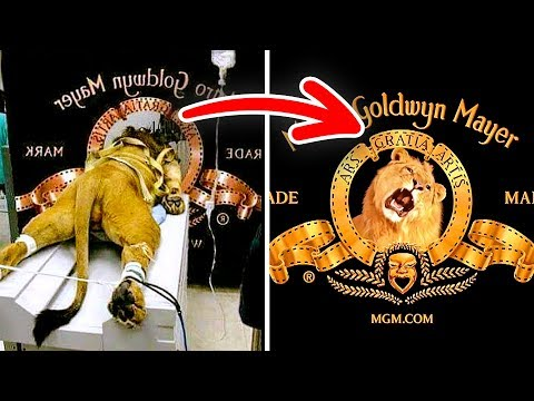 12 Facts About Famous Logos You Didn't Know