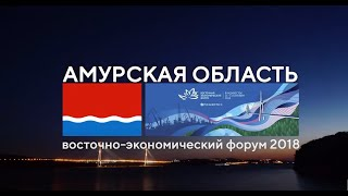 Итоги ВЭФ 2018 Экспозиция Амурской области