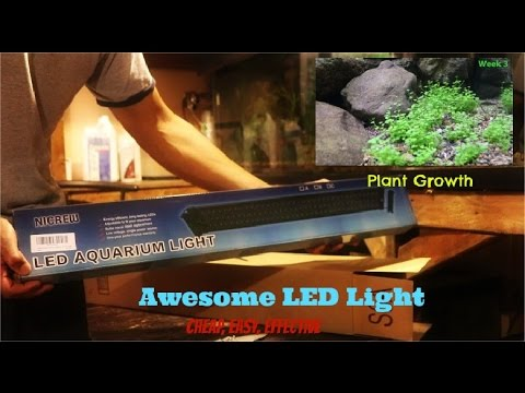 Awesome Aquarium Light| Plant Growth| Nicrew LED