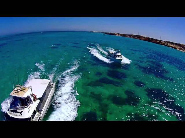 Ningaloo Reef Dive - Whale Shark Adventure | Swim with Whale Sharks Ningaloo Reef